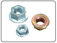 Flange Nuts, Flange Nuts  Exporter in India